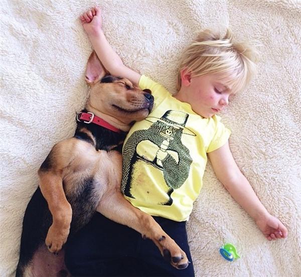 一起睡觉的好哥俩(二)