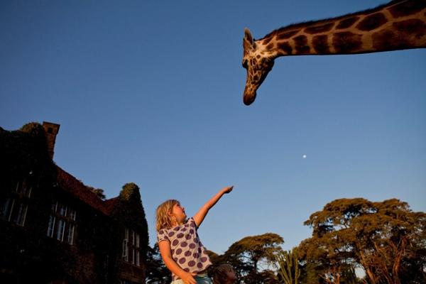 长颈鹿庄园(八)