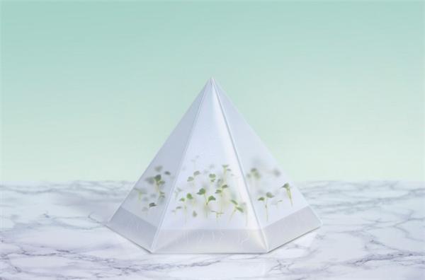 室内折叠微型花园