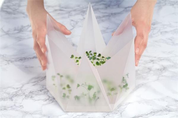 室内折叠微型花园(五)