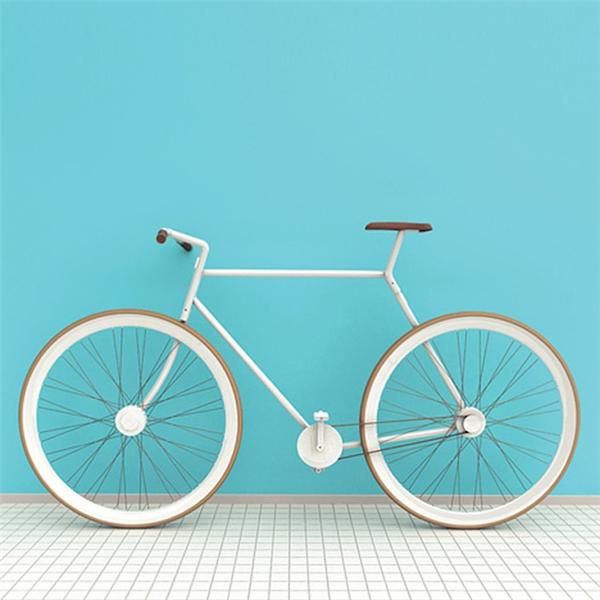 老板来一份自行车打包带走(二)