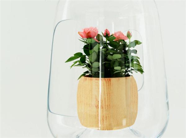 优雅温室小吊灯(七)