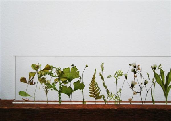 充满诗意的花园尺(九)