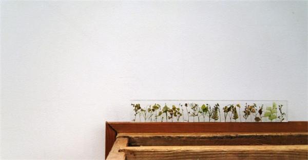充满诗意的花园尺(十)