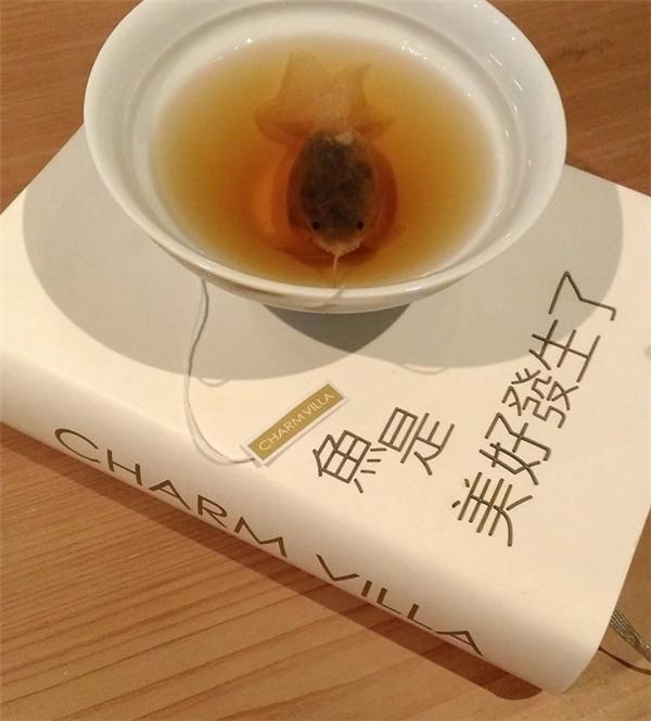 很有意思的金鱼茶包(七)