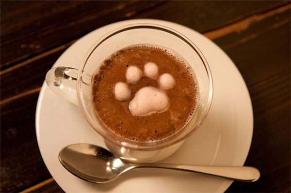 可爱的猫咪棉花糖(二)