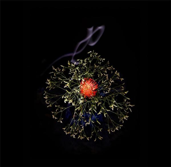 美腻的花瓣烟花(十二)