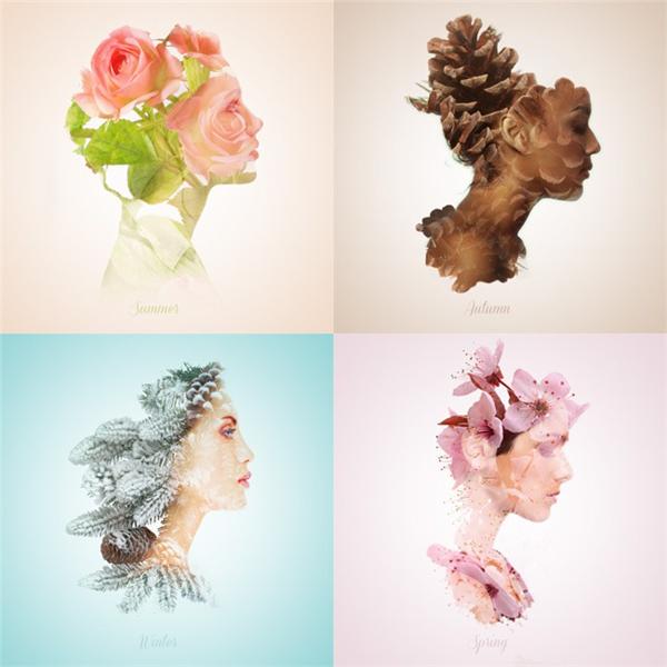 变迁的四季美人