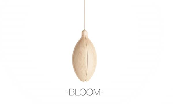 Lamp Bloom 吊顶灯(二)