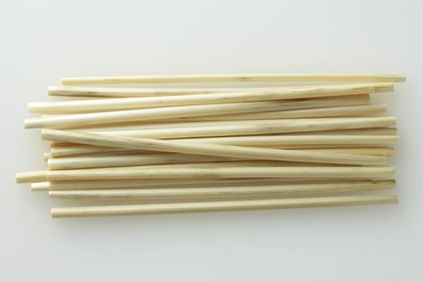 Straw 麦秆吸管(二)