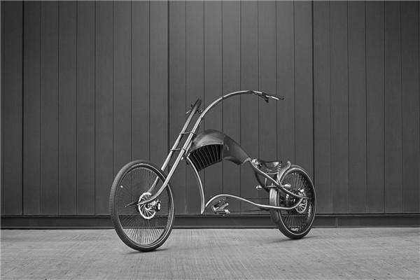 Archont Electro 电动自行车(二)