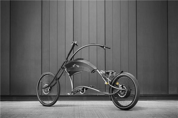 Archont Electro 电动自行车(三)