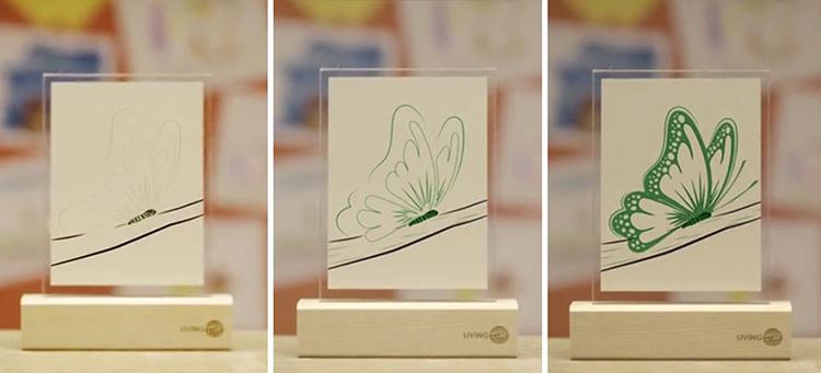 Living Ink 显示过程 蝴蝶