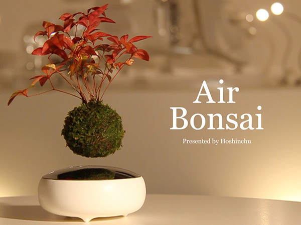 Air Bonsa 磁悬浮盆栽(五)