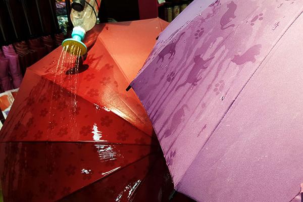 魔法雨伞(三)
