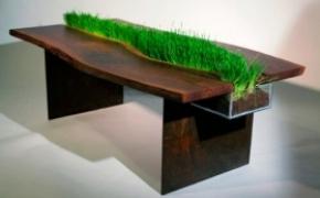 充满绿色的生态办公桌
