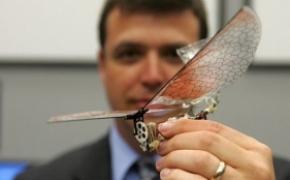 美军研制微型军用小飞机