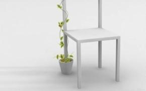 花盆里长出的椅子