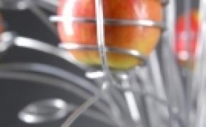可以在屋里摘的苹果