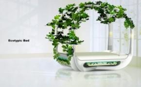 生机盎然的绿色生态床