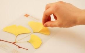 银杏树叶样式的便签
