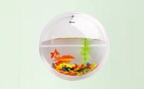创意的悬挂式鱼缸