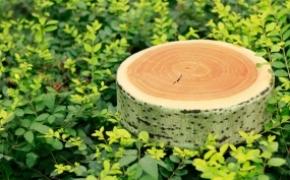 树墩子样式的仿真靠垫抱枕