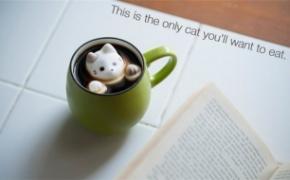 可爱的猫咪棉花糖