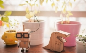 Plant Friends 盆栽检测系统