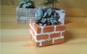 DIY花盆砖多肉植物