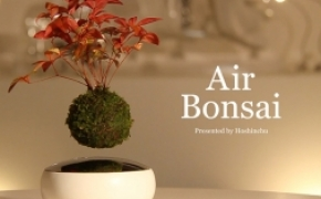 Air Bonsa 磁悬浮空中盆栽盆景