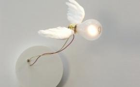 Lucellino 努力飞翔的灯泡
