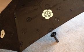 遇水开花的魔法雨伞